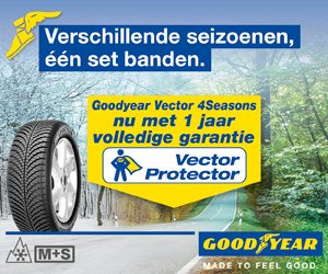 Goodyear 4seizoen band